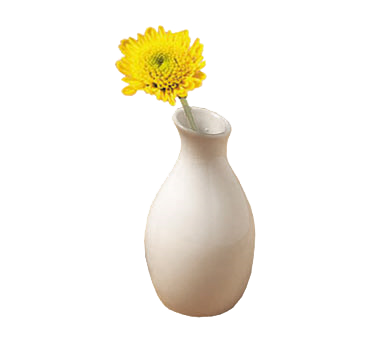 American Metalcraft BVJGG4 bud vase, china