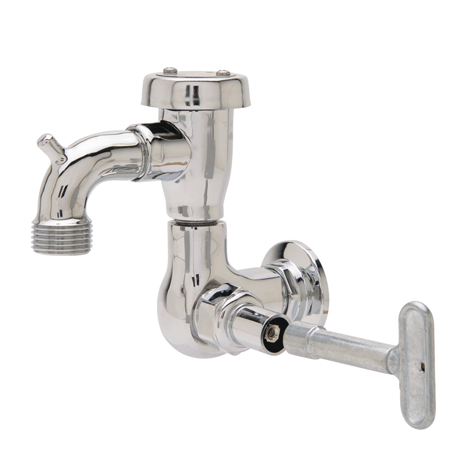 Fisher 29548 faucet, single wall mount, with hose threads