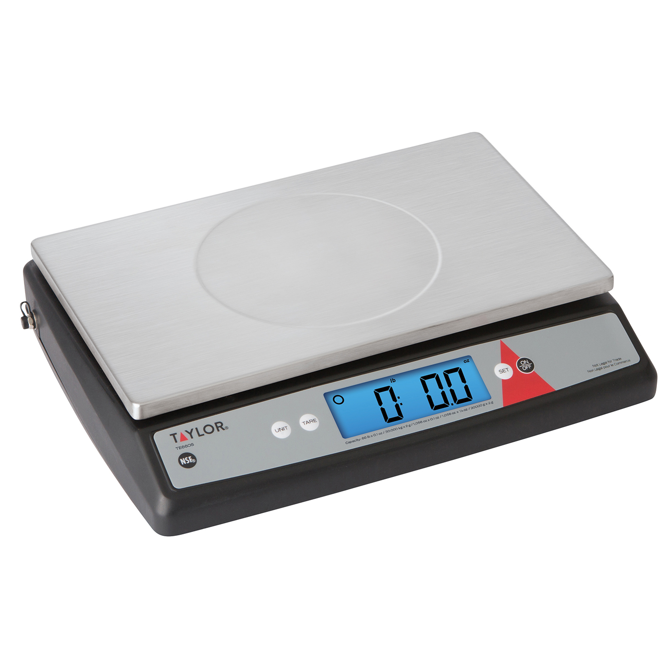 Taylor Precision TE66OS scale, portion, digital